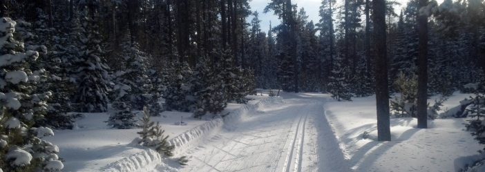 Nordic Ski Trail resized.jpg