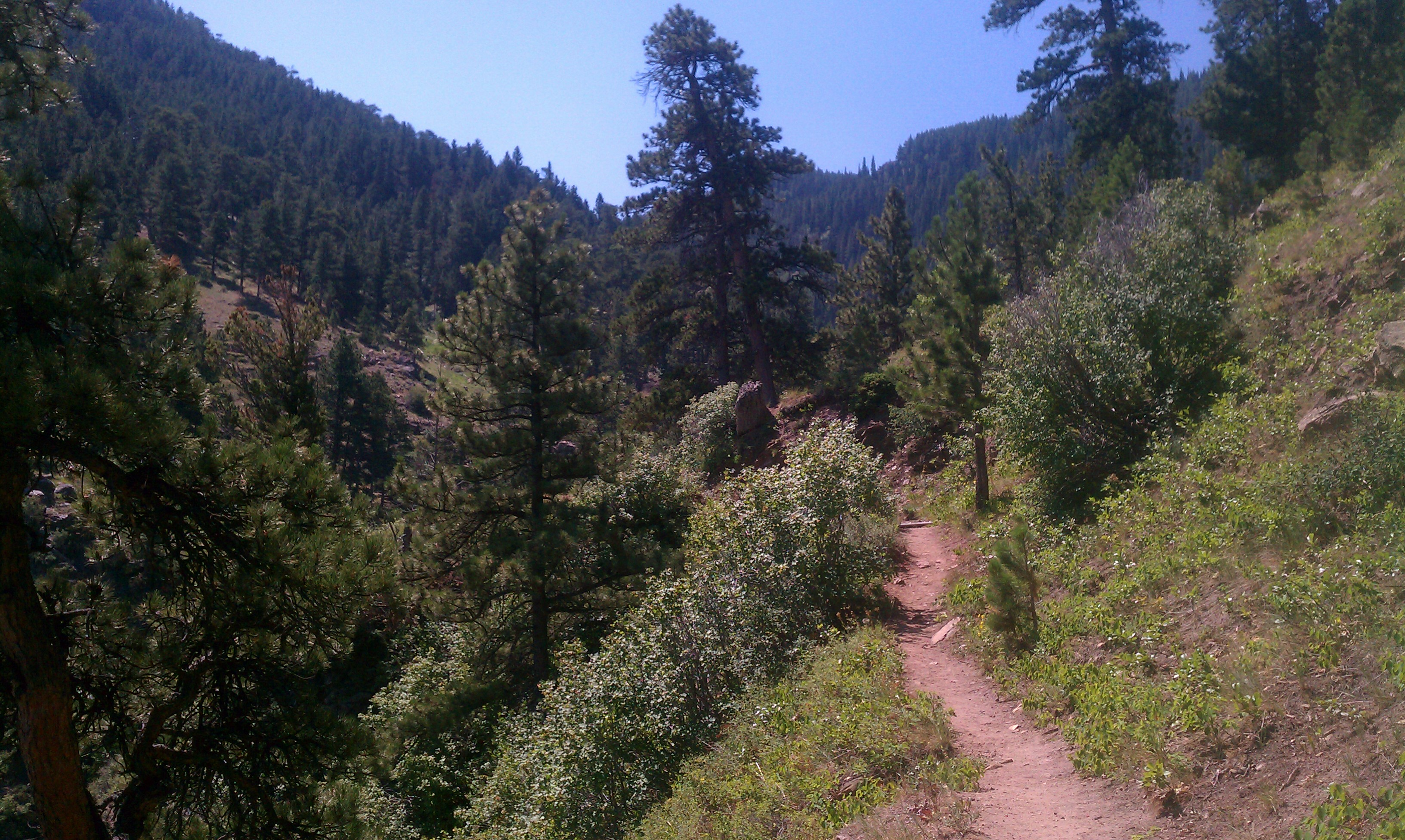 2012-07-12 Bridle Trail