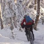 Fatbike Racer in Snow